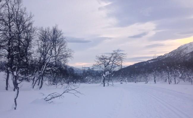 Skiing near Lyngseidet